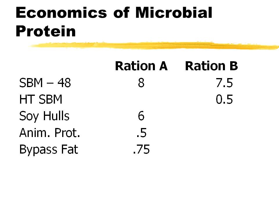 Economics of Microbial Protein