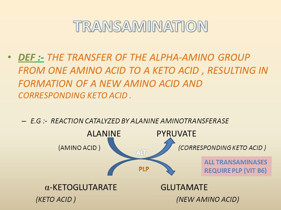 DEF :- THE TRANSFER OF THE ALPHA-AMINO GROUP FROM ONE AMINO ACID TO A KETO ACID, RESULTING IN FORMATION OF A NEW AMINO ACID AND CORRESPONDING KETO ACI