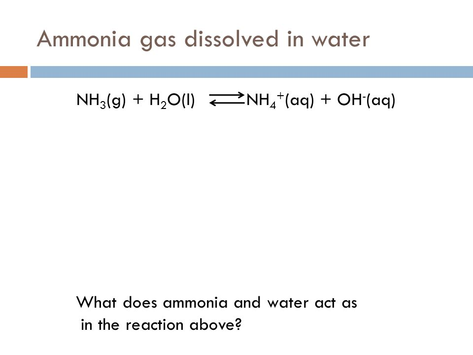 Ammonia gas dissolved in water NH 3 (g) + H 2 O(l) NH 4 + (aq) + OH - (aq) What does ammonia and water act as in the reaction above?