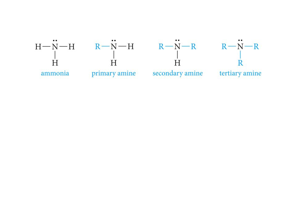 Classify the following amines as primary, secondary or tertiary