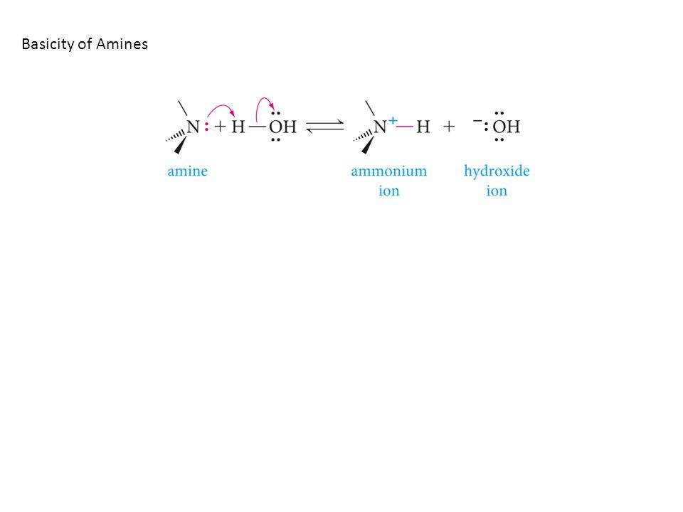 Basicity of Amines