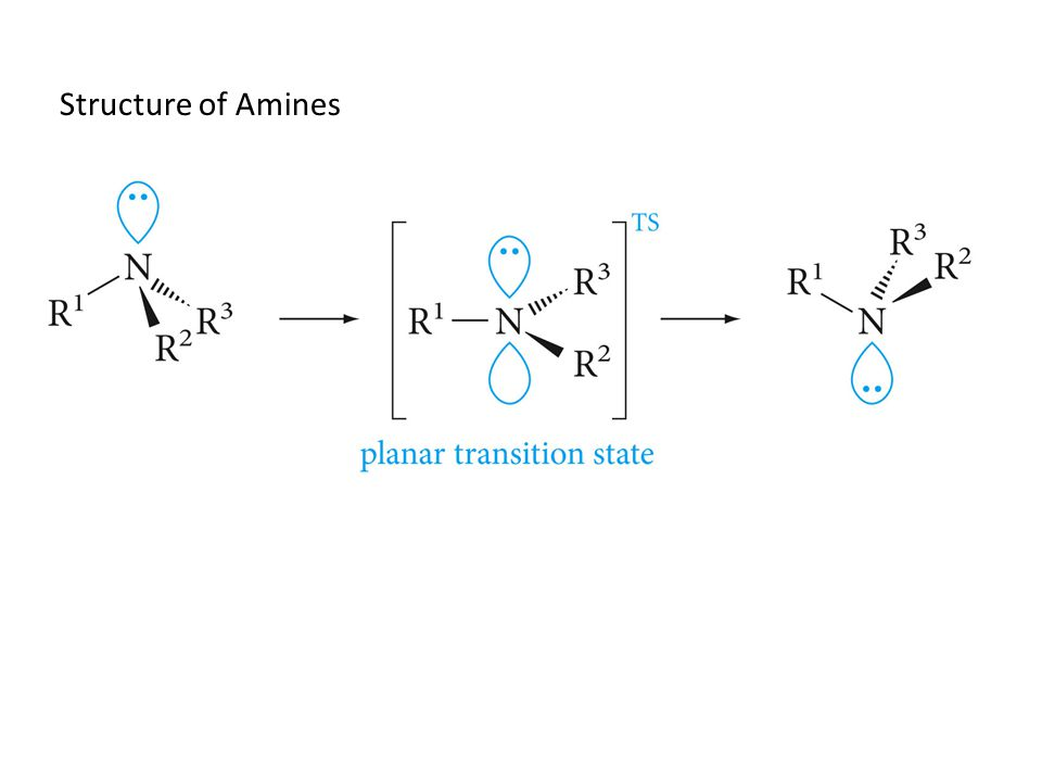 Structure of Amines