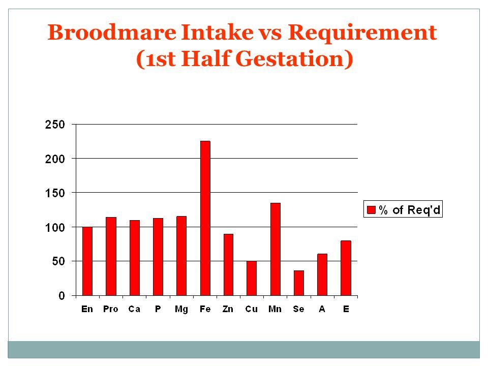 Broodmare Intake vs Requirement (1st Half Gestation)