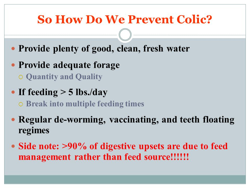 So How Do We Prevent Colic? Provide plenty of good, clean, fresh water Provide adequate forage  Quantity and Quality If feeding > 5 lbs./day  Break