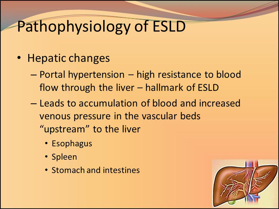 Pathophysiology of ESLD Hepatic changes – Portal hypertension – high resistance to blood flow through the liver – hallmark of ESLD – Leads to accumula