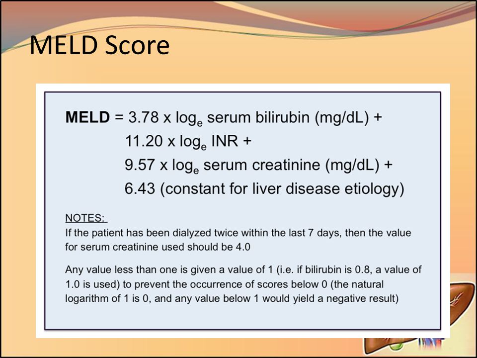 MELD Score