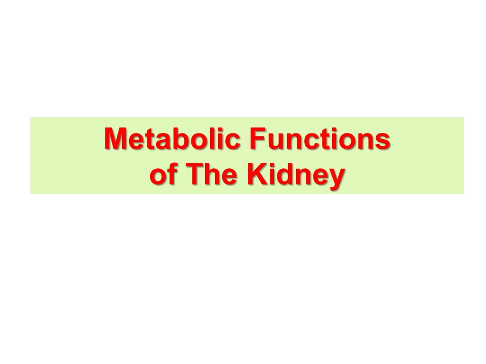 Kidney & glucose homeostasis The kidney can be considered as 2 organs due to the differences in the distribution of various enzymes in renal medulla & renal cortex Renal medulla Renal cortex Glucose utilization Glucose synthesis hexokinase (of glycolysis) Cells of the medulla have considerable amounts of hexokinase (of glycolysis).