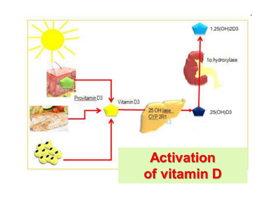 Activation of vitamin D