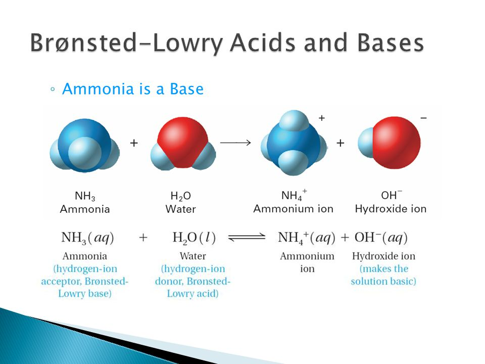 ◦ Ammonia is a Base 19.1