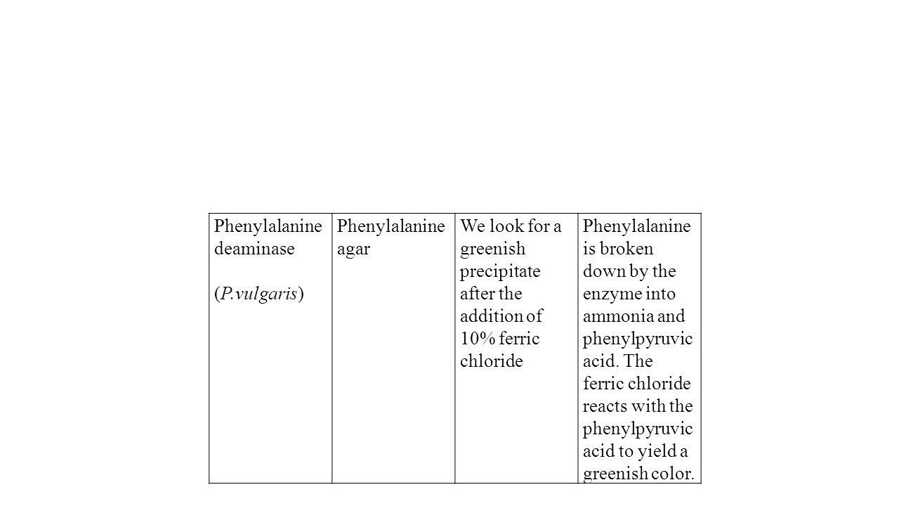 Phenylalanine deaminase (P.vulgaris) Phenylalanine agar We look for a greenish precipitate after the addition of 10% ferric chloride Phenylalanine is