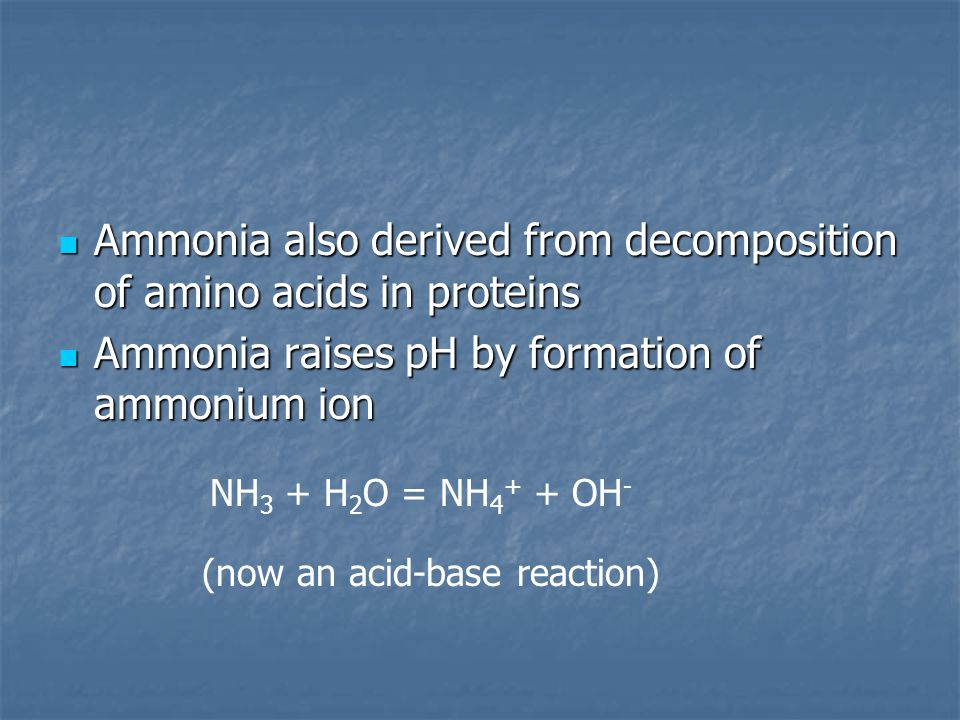 Ammonia also derived from decomposition of amino acids in proteins Ammonia also derived from decomposition of amino acids in proteins Ammonia raises pH by formation of ammonium ion Ammonia raises pH by formation of ammonium ion NH 3 + H 2 O = NH 4 + + OH - (now an acid-base reaction)