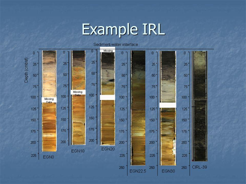 Example IRL