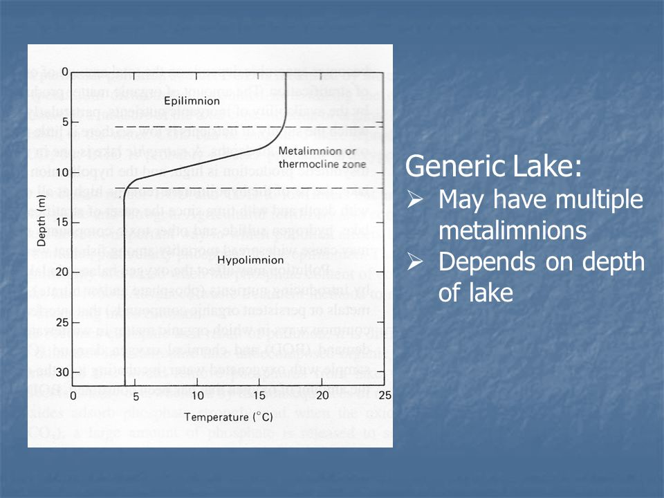 Generic Lake:  May have multiple metalimnions  Depends on depth of lake