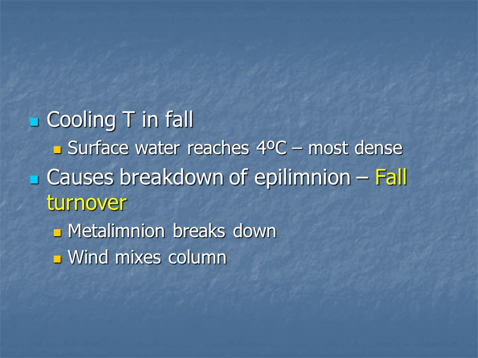 Cooling T in fall Cooling T in fall Surface water reaches 4ºC – most dense Surface water reaches 4ºC – most dense Causes breakdown of epilimnion – Fall turnover Causes breakdown of epilimnion – Fall turnover Metalimnion breaks down Metalimnion breaks down Wind mixes column Wind mixes column