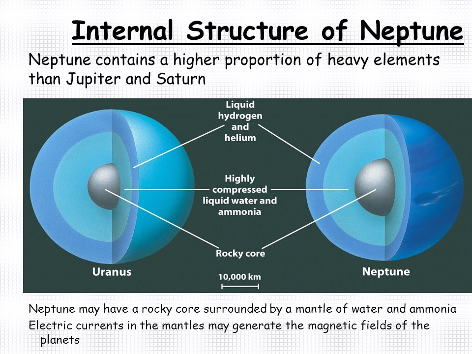 Neptune contains a higher proportion of heavy elements than Jupiter and Saturn Neptune may have a rocky core surrounded by a mantle of water and ammonia Electric currents in the mantles may generate the magnetic fields of the planets Internal Structure of Neptune
