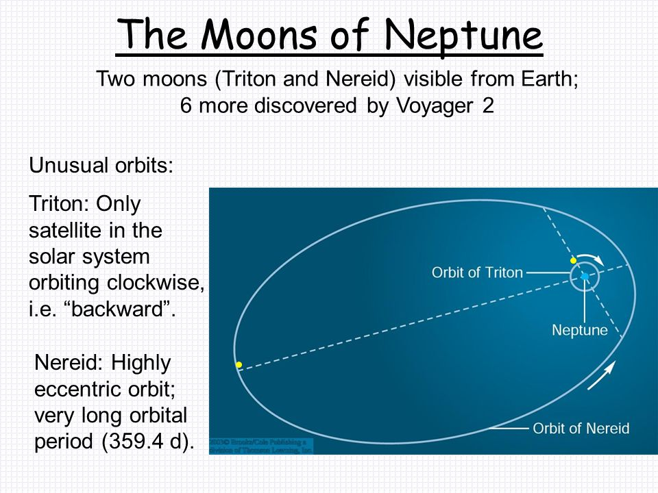 The Moons of Neptune Two moons (Triton and Nereid) visible from Earth; 6 more discovered by Voyager 2 Unusual orbits: Triton: Only satellite in the solar system orbiting clockwise, i.e.