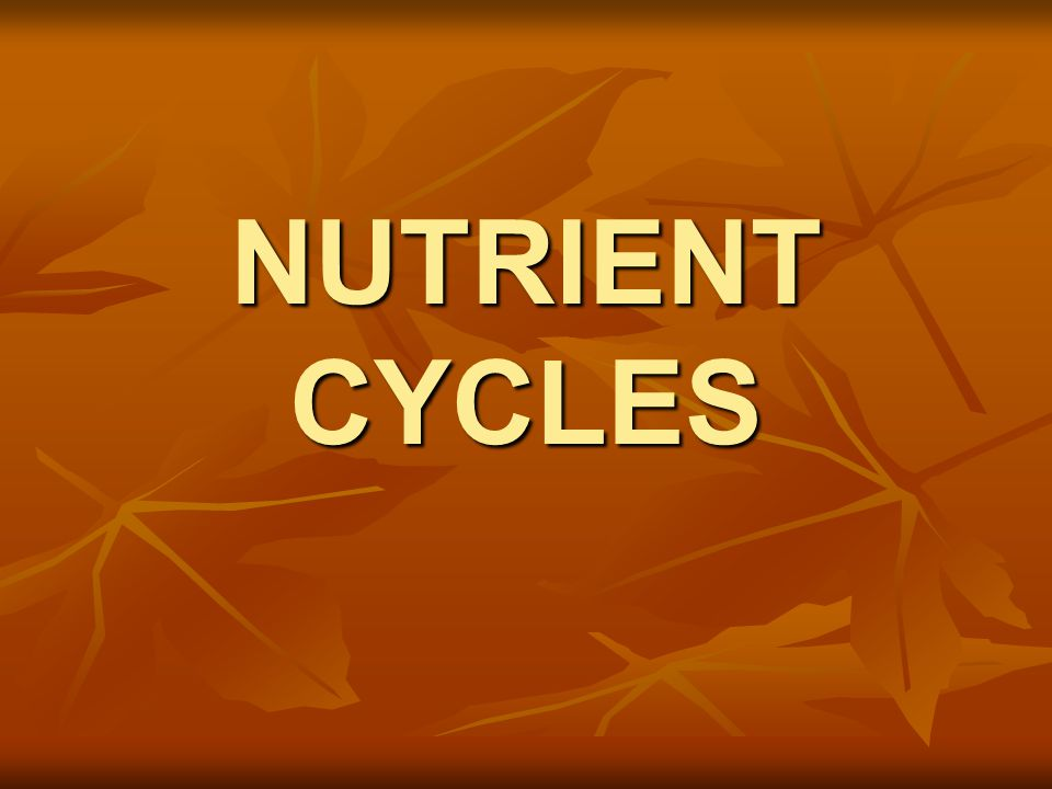 GEOCHEMICAL CYCLES Movement of a particular form of matter through the living and nonliving parts of an ecosystem Earth is a closed system…must continually recycle essential matter (Matter is neither created nor destroyed)