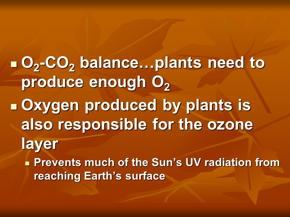 O 2 -CO 2 balance…plants need to produce enough O 2 O 2 -CO 2 balance…plants need to produce enough O 2 Oxygen produced by plants is also responsible for the ozone layer Oxygen produced by plants is also responsible for the ozone layer Prevents much of the Sun's UV radiation from reaching Earth's surface Prevents much of the Sun's UV radiation from reaching Earth's surface