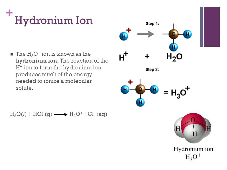 + Hydronium Ion The H 3 O + ion is known as the hydronium ion. The reaction of the H + ion to form the hydronium ion produces much of the energy neede