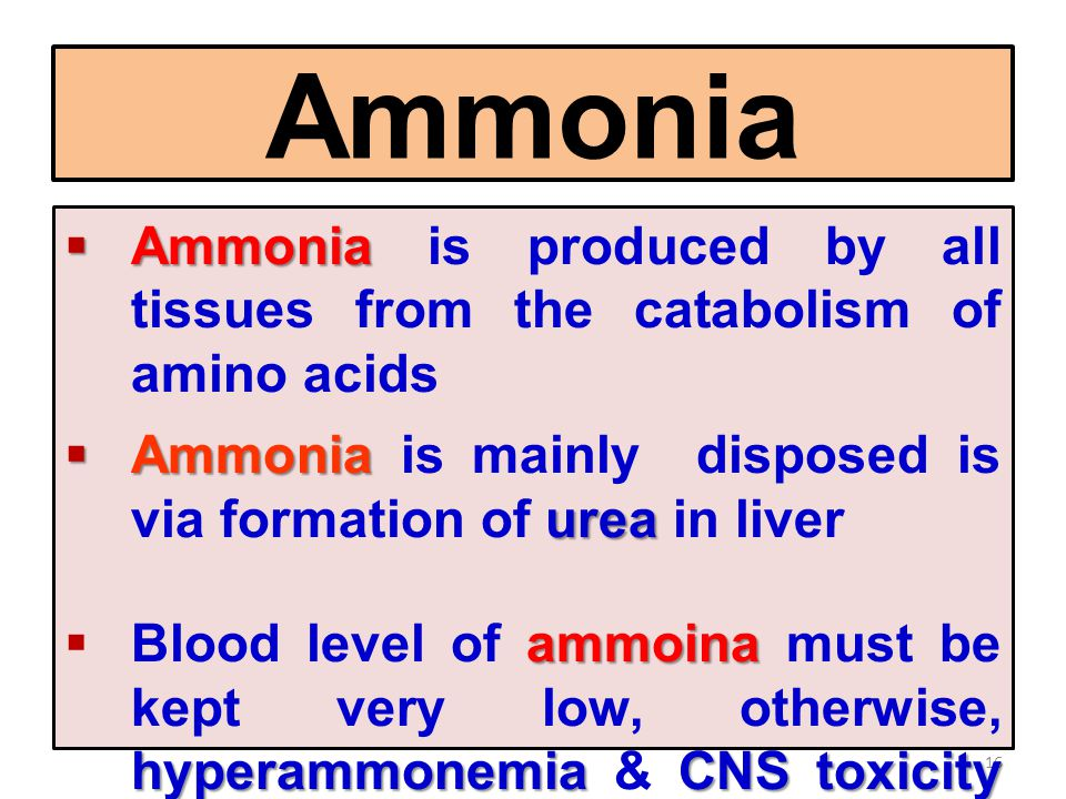 16 Ammonia  Ammonia  Ammonia is produced by all tissues from the catabolism of amino acids  Ammonia urea  Ammonia is mainly disposed is via format