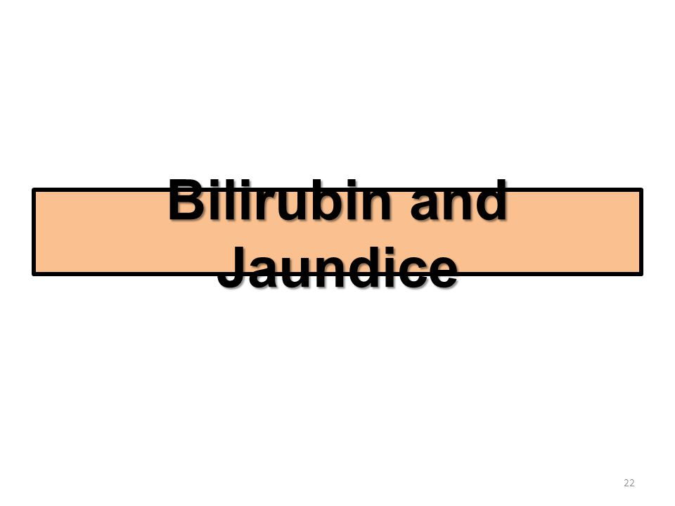 Bilirubin and Jaundice 22