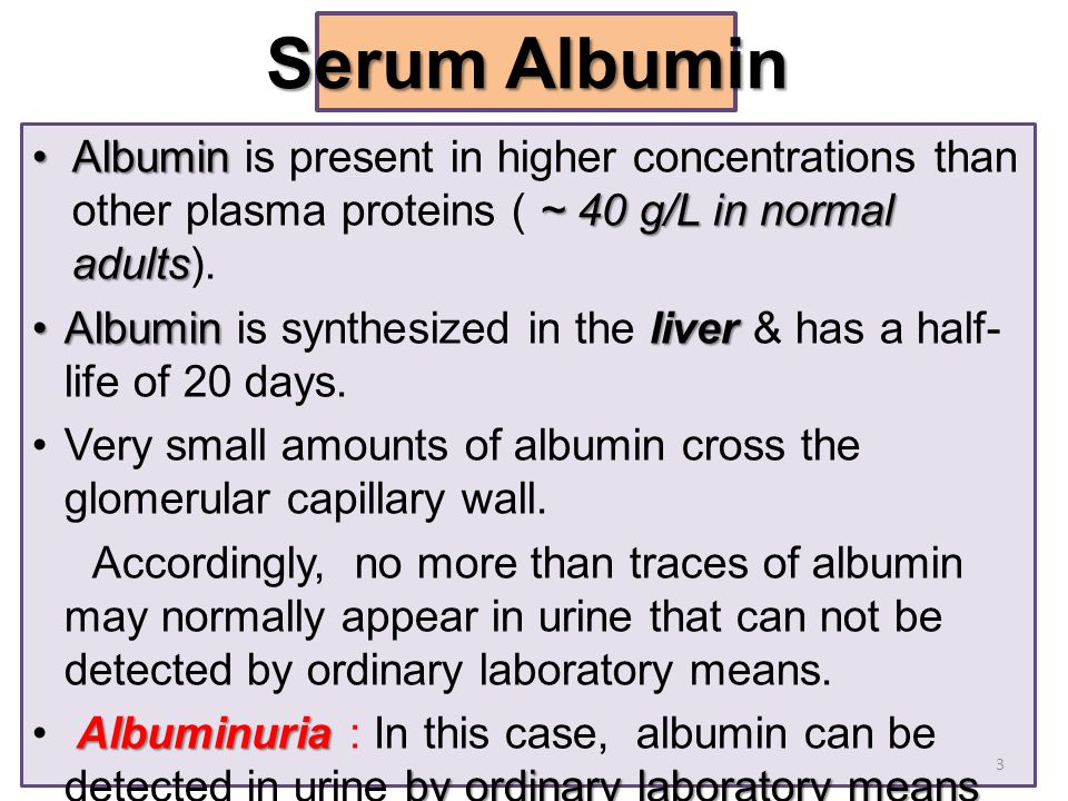 Albumin ~ 40 g/L in normal adultsAlbumin is present in higher concentrations than other plasma proteins ( ~ 40 g/L in normal adults). AlbuminliverAlbu