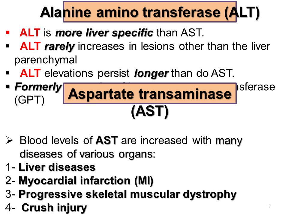 moreliver specific  ALT is more liver specific than AST. rarely  ALT rarely increases in lesions other than the liver parenchymal longer  ALT eleva