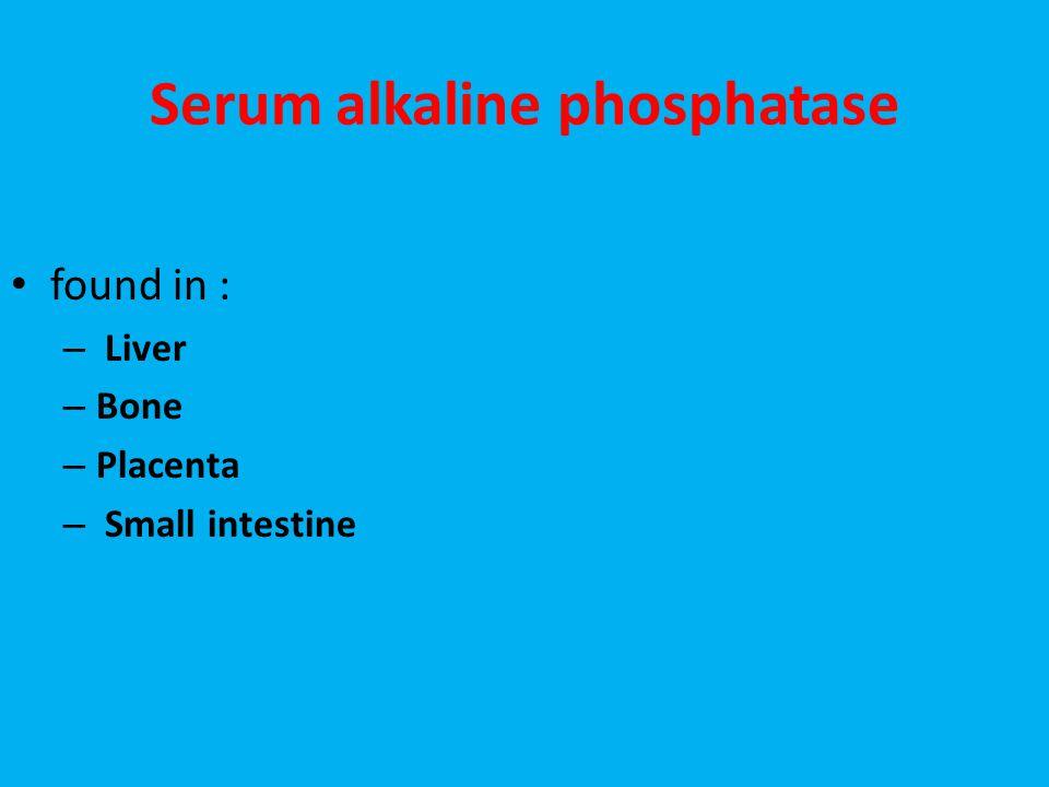 Serum alkaline phosphatase found in : – Liver – Bone – Placenta – Small intestine