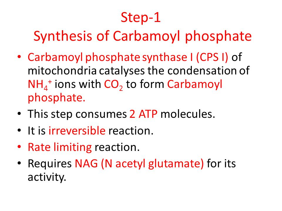Step-1 Synthesis of Carbamoyl phosphate Carbamoyl phosphate synthase I (CPS I) of mitochondria catalyses the condensation of NH 4 + ions with CO 2 to form Carbamoyl phosphate.