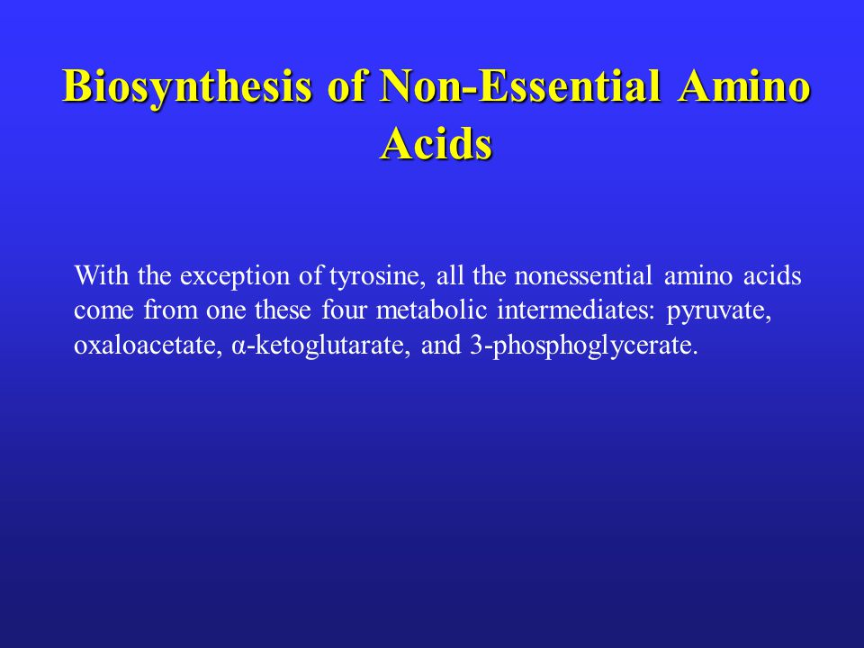 Biosynthesis of Non-Essential Amino Acids With the exception of tyrosine, all the nonessential amino acids come from one these four metabolic intermed