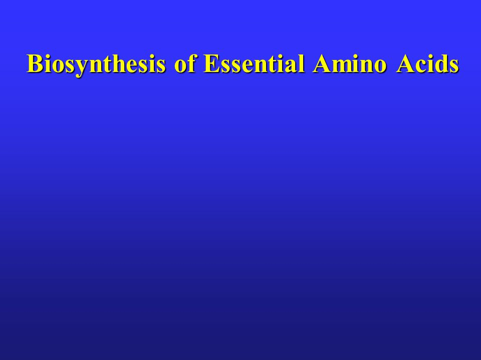 Biosynthesis of Essential Amino Acids
