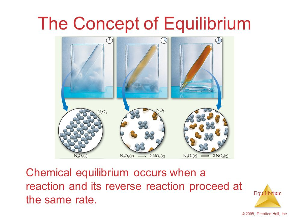 Equilibrium © 2009, Prentice-Hall, Inc. The Concept of Equilibrium Chemical equilibrium occurs when a reaction and its reverse reaction proceed at the
