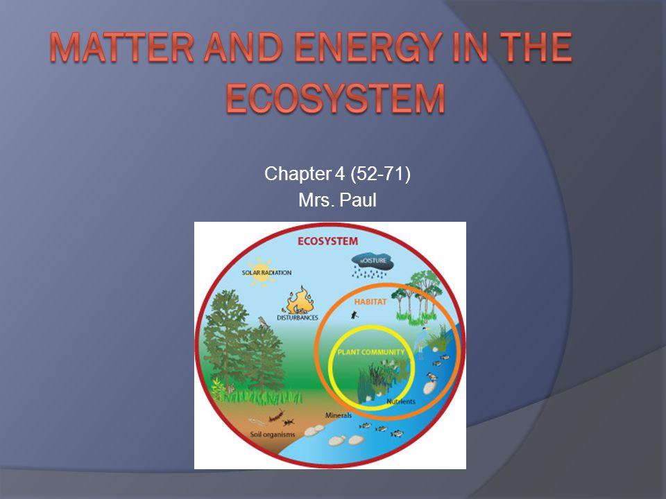Chapter 4 (52-71) Mrs. Paul
