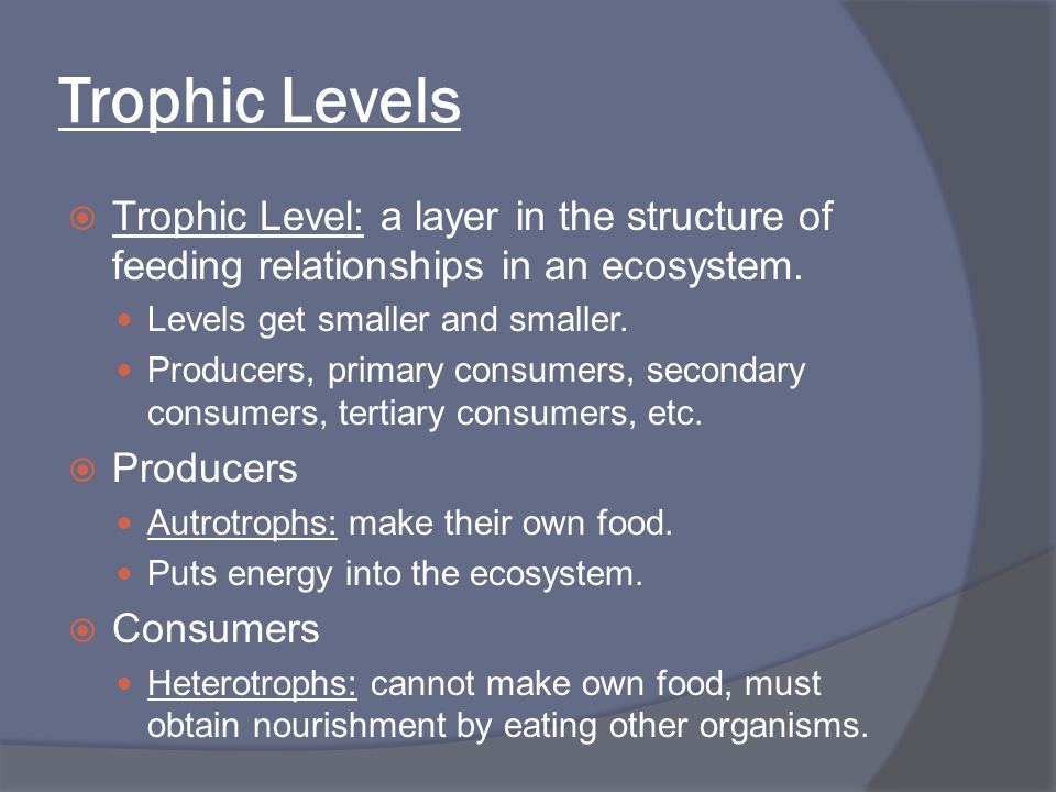 Trophic Levels  Trophic Level: a layer in the structure of feeding relationships in an ecosystem. Levels get smaller and smaller. Producers, primary