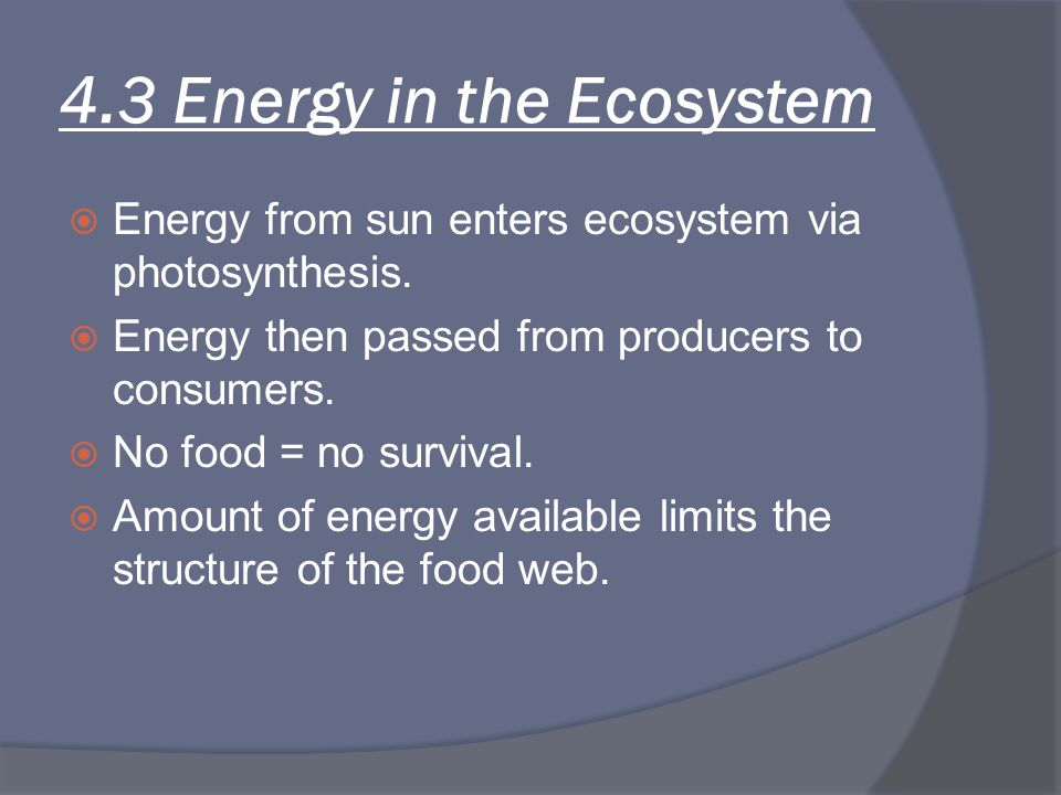 4.3 Energy in the Ecosystem  Energy from sun enters ecosystem via photosynthesis.  Energy then passed from producers to consumers.  No food = no su