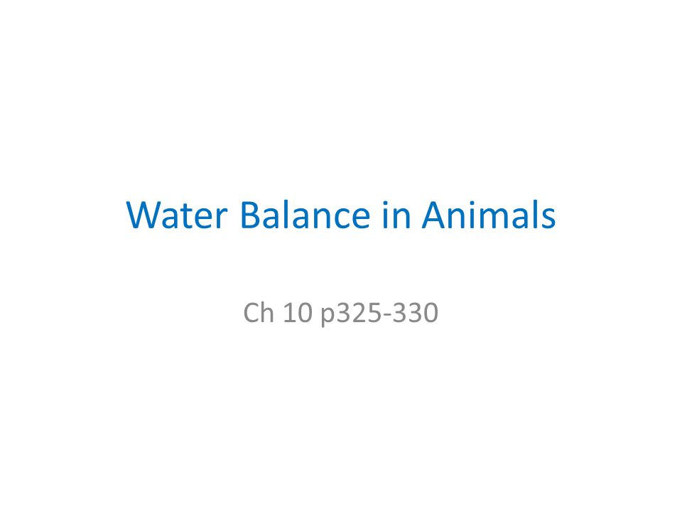 Water Balance in Animals Ch 10 p325-330