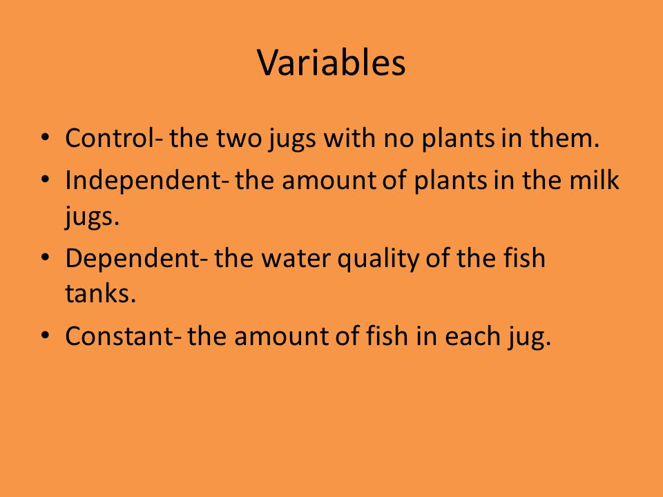 Variables Control- the two jugs with no plants in them. Independent- the amount of plants in the milk jugs. Dependent- the water quality of the fish t