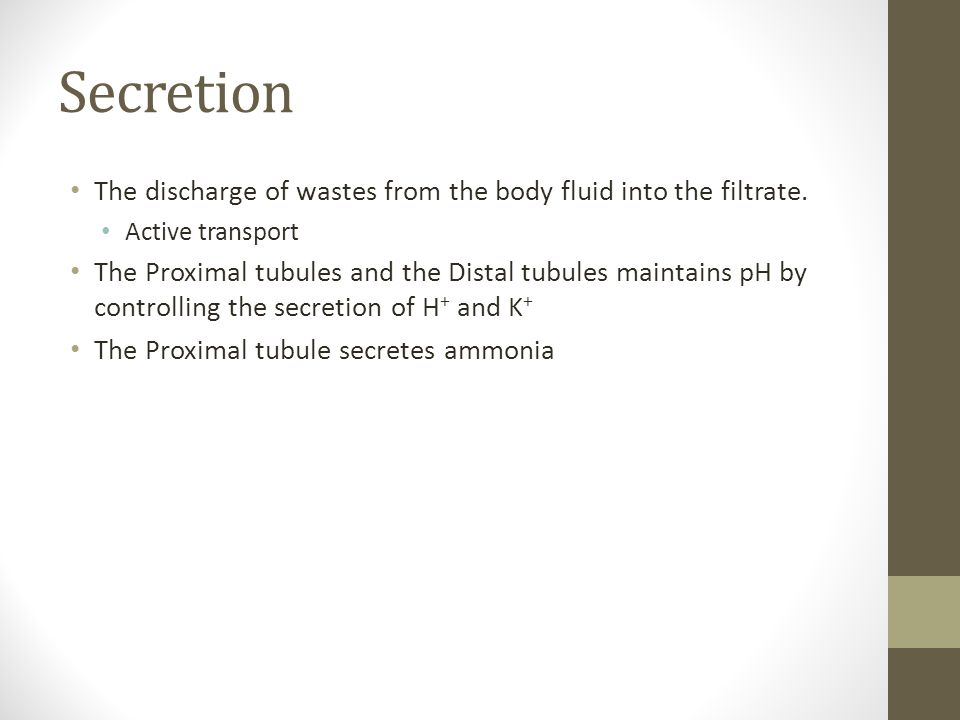 Secretion The discharge of wastes from the body fluid into the filtrate.