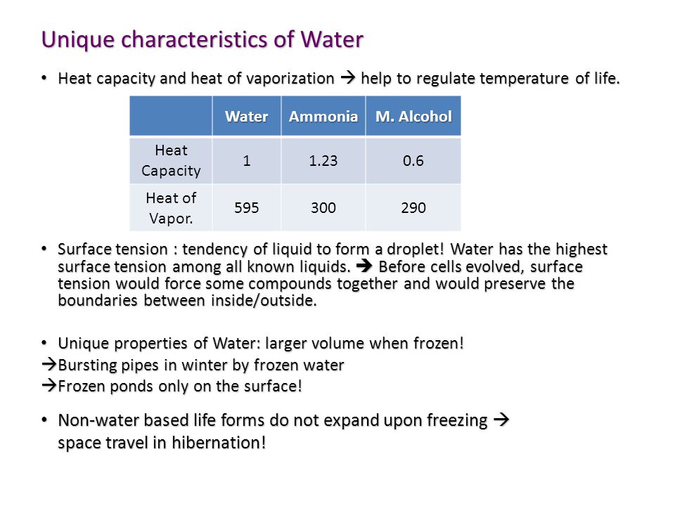 Unique characteristics of Water Heat capacity and heat of vaporization  help to regulate temperature of life.