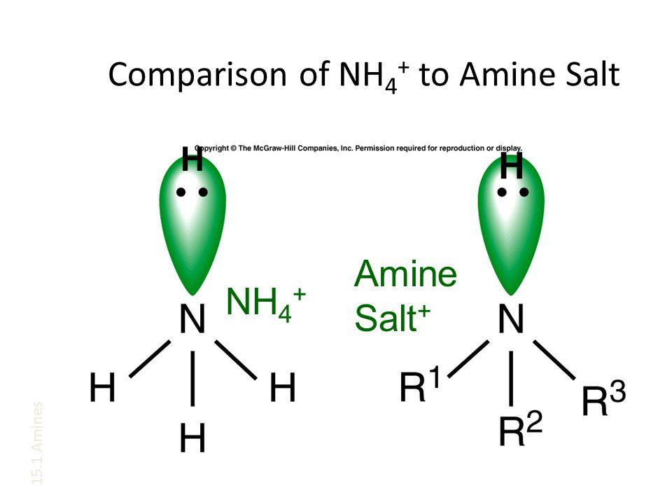 Comparison of NH 4 + to Amine Salt H NH 4 + H Amine Salt + 15.1 Amines