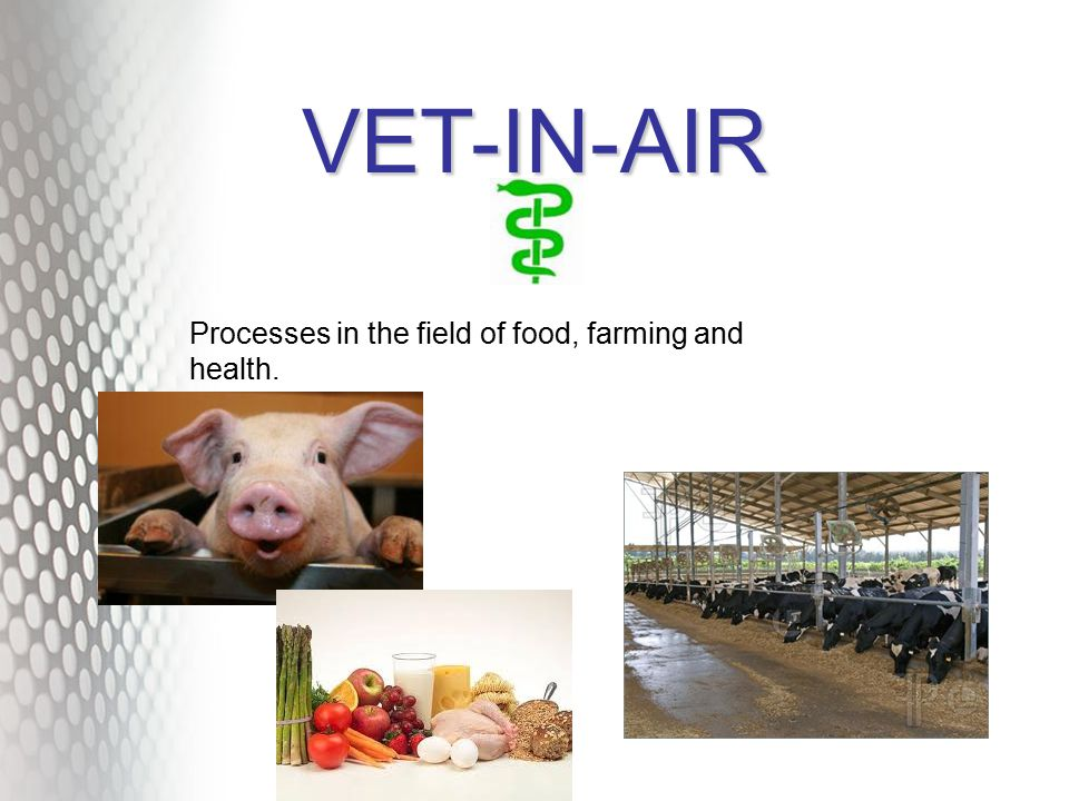 VET-IN-AIR Processes in the field of food, farming and health.