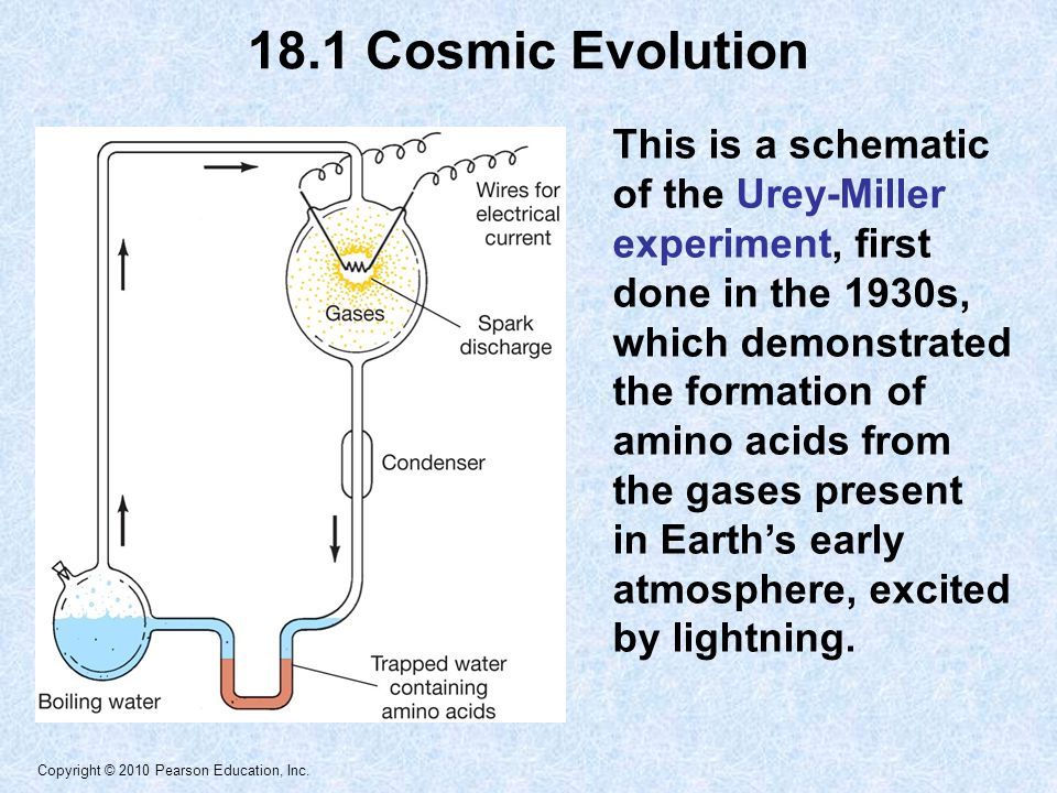 Copyright © 2010 Pearson Education, Inc. This is a schematic of the Urey-Miller experiment, first done in the 1930s, which demonstrated the formation