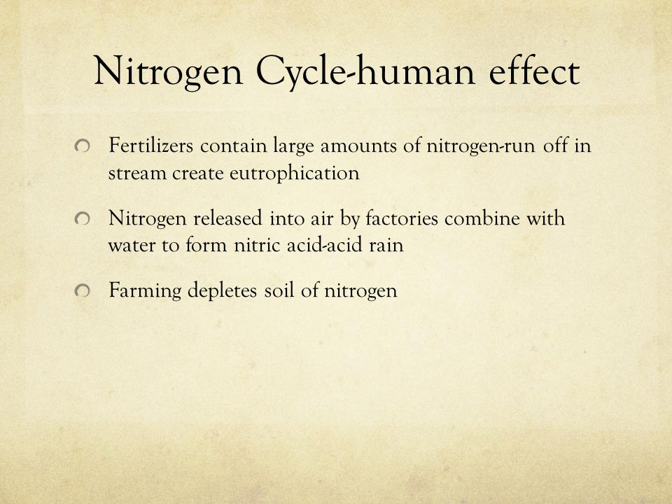 Nitrogen Cycle-human effect Fertilizers contain large amounts of nitrogen-run off in stream create eutrophication Nitrogen released into air by factories combine with water to form nitric acid-acid rain Farming depletes soil of nitrogen