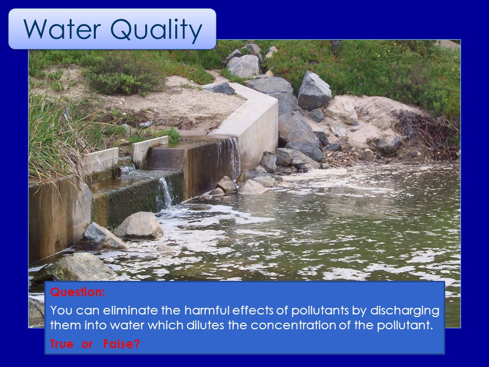Question: You can eliminate the harmful effects of pollutants by discharging them into water which dilutes the concentration of the pollutant.