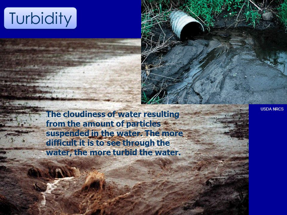 USDA NRCS Turbidity The cloudiness of water resulting from the amount of particles suspended in the water.