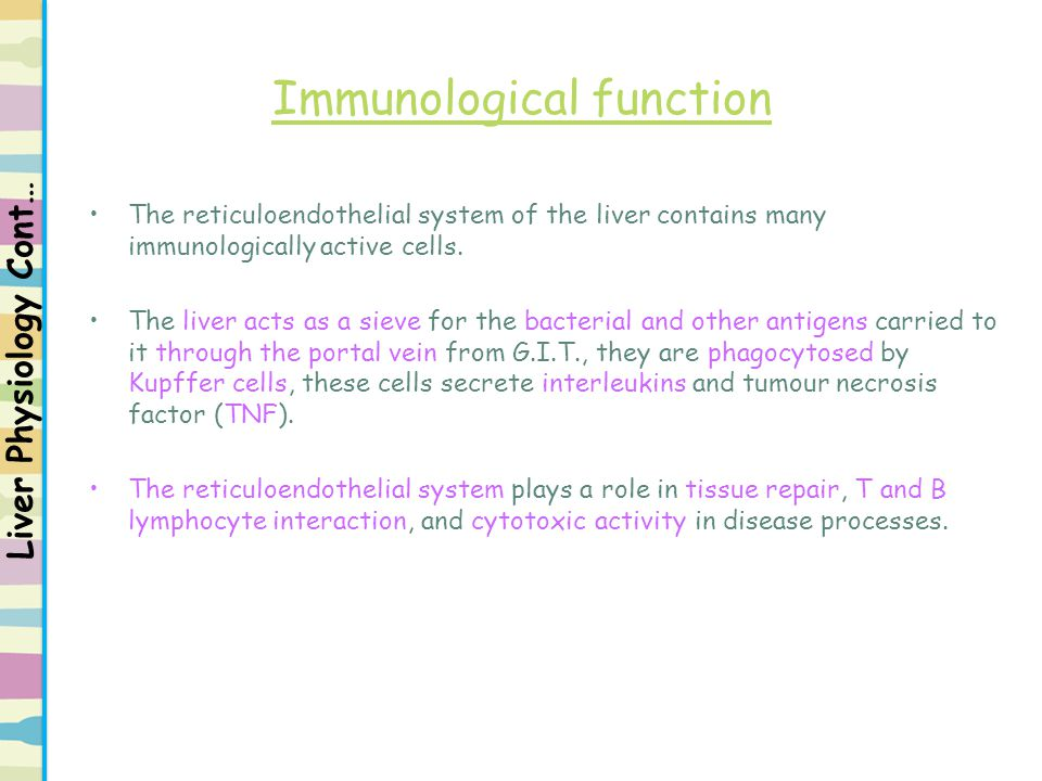 Immunological function The reticuloendothelial system of the liver contains many immunologically active cells. The liver acts as a sieve for the bacte