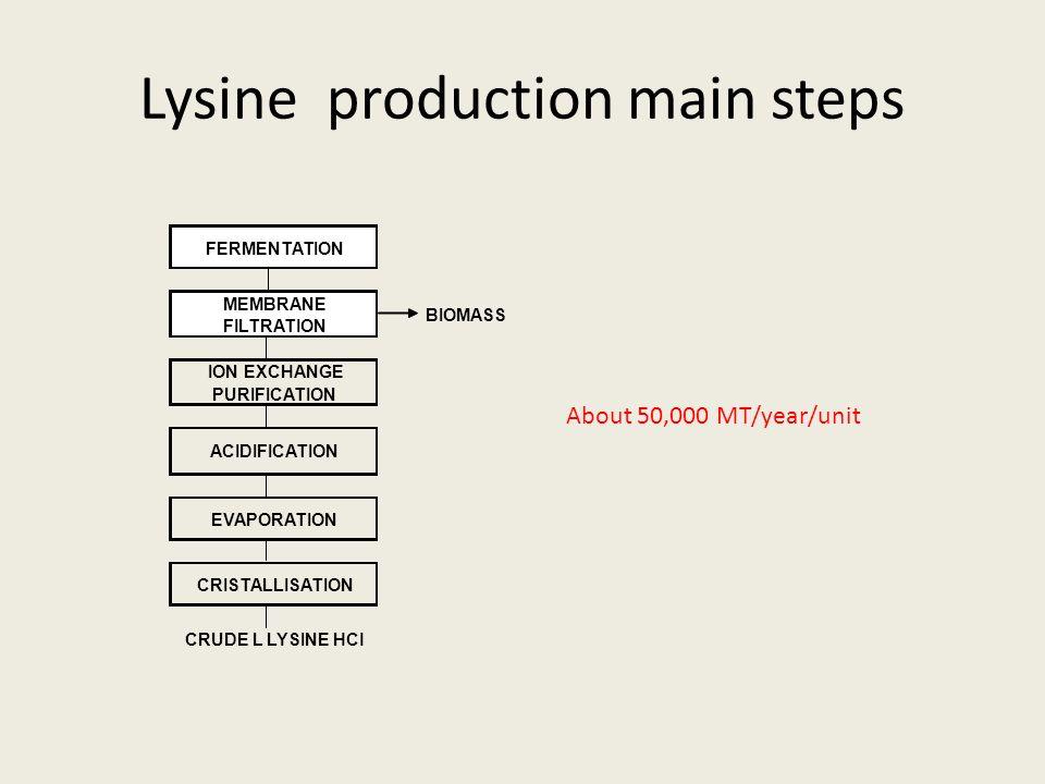 Lysine production main steps About 50,000 MT/year/unit FERMENTATION MEMBRANE FILTRATION BIOMASS ION EXCHANGE PURIFICATION EVAPORATION CRISTALLISATION CRUDE L LYSINE HCl ACIDIFICATION
