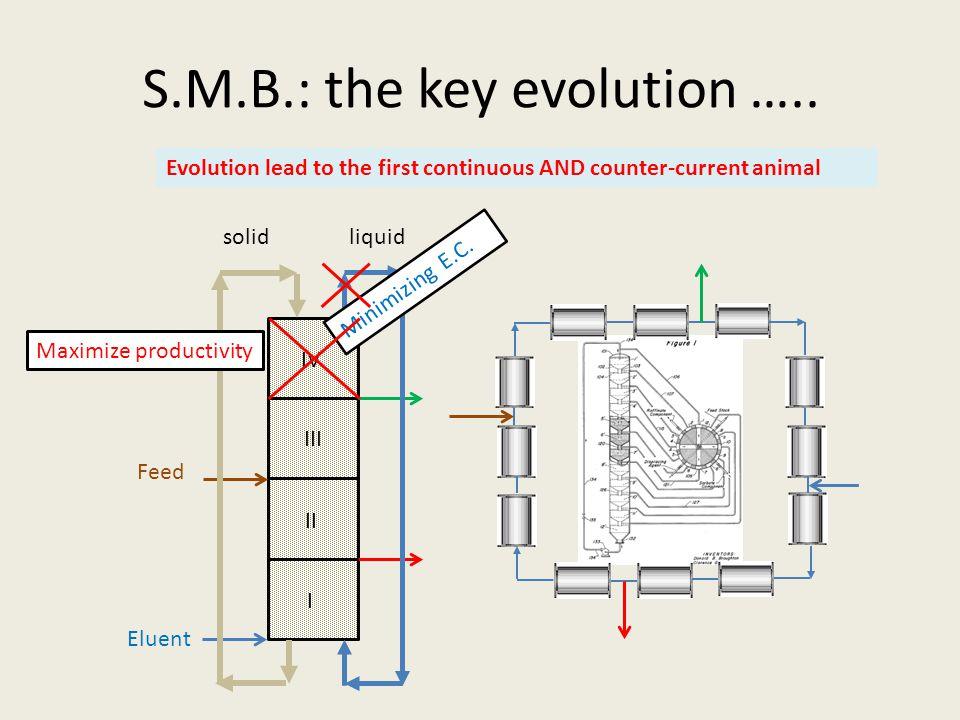 S.M.B.: the key evolution ….. solidliquid I II III IV Minimizing E.C.