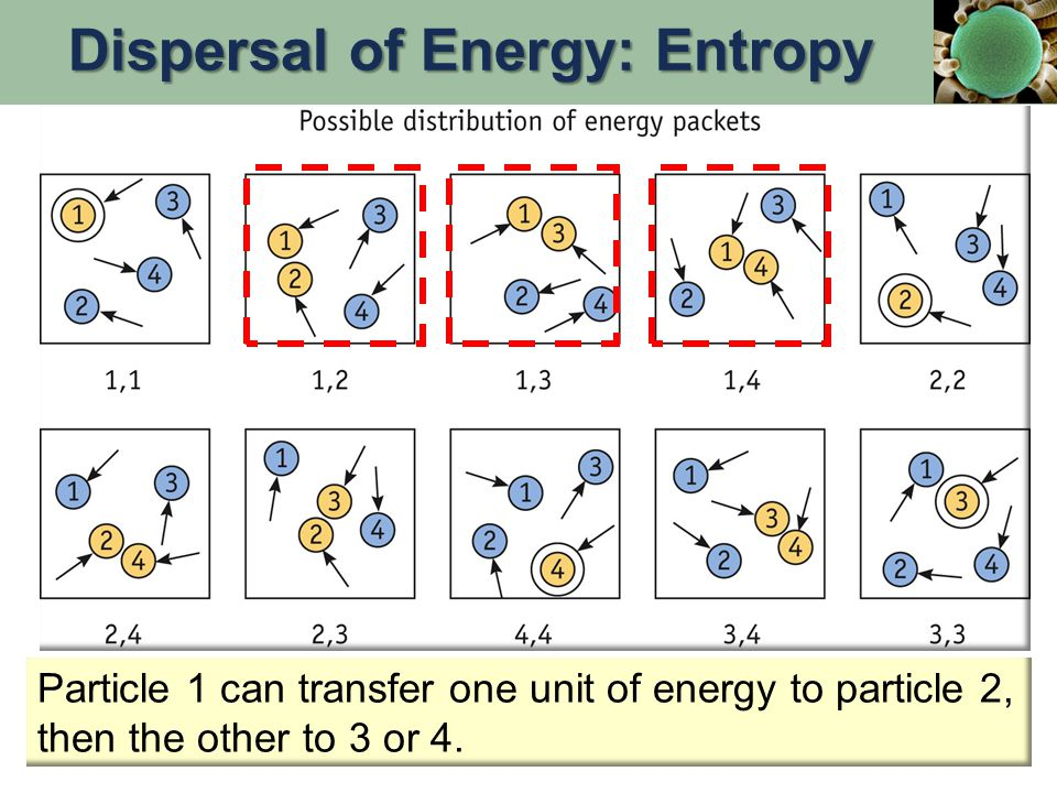 Particle 1 can transfer one unit of energy to particle 2, then the other to 3 or 4.