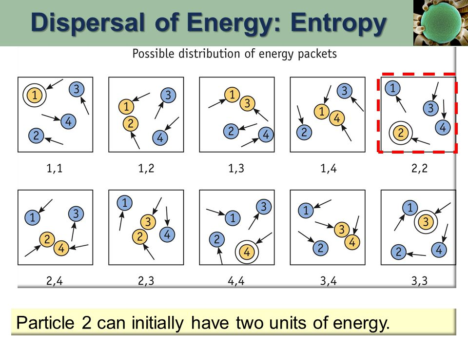 Particle 2 can initially have two units of energy. Dispersal of Energy: Entropy